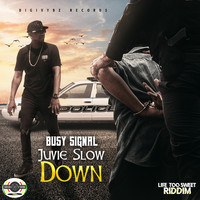 Busy Signal - Juvie Slow Down