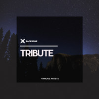 Various Artists - Tribute