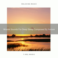 Nature Music Nature Songs - Woods Sounds For Deep Sleep Composed By Nature