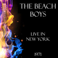 The Beach Boys - Live in New York 1971 (Live)