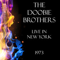 The Doobie Brothers - Live in San Francisco 1975 (Live)