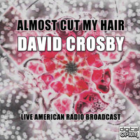 David Crosby - Almost Cut My Hair (Live)
