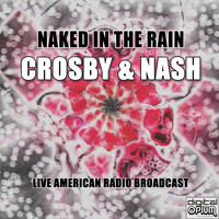 Crosby & Nash - Naked In The Rain (Live)