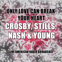 Crosby, Stills, Nash & Young - Only Love Can Break Your Heart (Live)