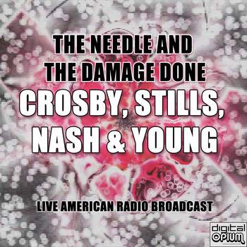 Crosby, Stills, Nash & Young - The Needle And The Damage Done (Live)