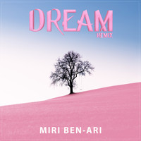Miri Ben-Ari - Dream (Remix)