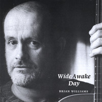 Brian Williams - Wide Awake Day