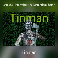Tinman - Can You Remember The Memories Shared