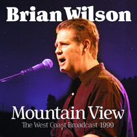 Brian Wilson - Mountain View