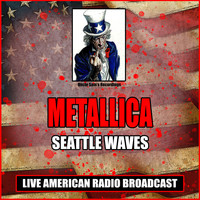 Metallica - Seattle Waves (Live)