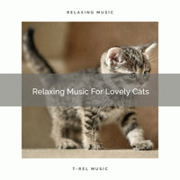 Sleep Cat - Relaxing Music For Lovely Cats