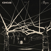 IceHouse - ICEHOUSE Plays Flowers Live