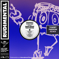 Rudimental - Come Over (feat. Anne-Marie & Tion Wayne) (Tommy Farrow Remix)