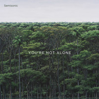 Semisonic - You're Not Alone
