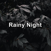 Relax - Rainy Night