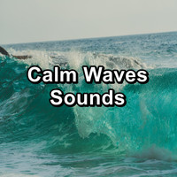 Nature - Calm Waves Sounds