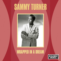 Sammy Turner - Wrapped In A Dream