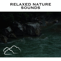 White Noise Radiance - Relaxed Nature Sounds