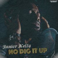 Junior Kelly - No Dig It Up