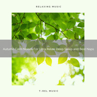 White Noise Meditation, White Noise Healing Center - Autumn Calm Noises For Ultra Relax, Deep Sleep and Best Naps