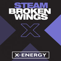 Steam - Broken Wings
