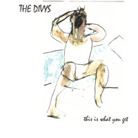The Divys - This Is What You Get