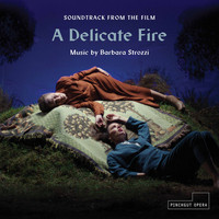 Erin Helyard / Simon Martyn-Ellis - A Delicate Fire (Soundtrack from the Film)