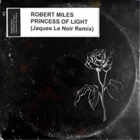 Robert Miles - Princess Of Light (Jaques Le Noir Remix)