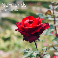 Ynw Lonely - Nofriends