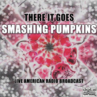 Smashing Pumpkins - There It Goes (Live)