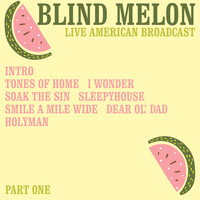 Blind Melon - Live American Broadcast - Part One (Live)