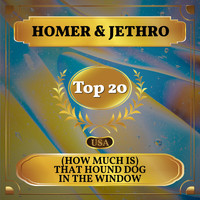 Homer & Jethro - (How Much Is) That Hound Dog in the Window (Billboard Hot 100 - No 17)