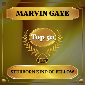 Marvin Gaye - Stubborn Kind of Fellow (Billboard Hot 100 - No 46)