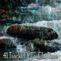 Classical Study Music - 41 Tracks of Tai Chi Time