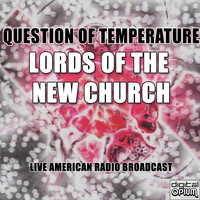Lords Of The New Church - Question Of Temperature (Live)