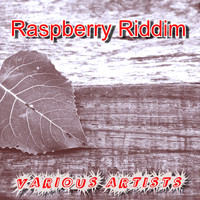 Various Artists / - Raspberry Riddim
