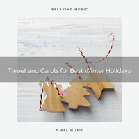 Animal and Bird Songs, Nature Music Nature Songs - Tweet and Carols for Best Winter Holidays