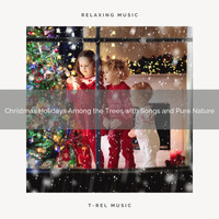 Relaxing Music Therapy, Instant Relax - Christmas Holidays Among the Trees with Songs and Pure Nature
