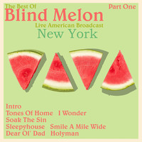 Blind Melon - Blind Melon - Live American Broadcast - New York - Part One (Live)