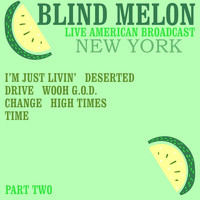 Blind Melon - Blind Melon - Live American Broadcast - New York - Part Two (Live)