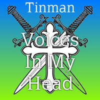 Tinman - Voices In My Head