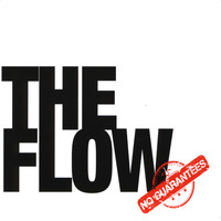 The Flow - No Guarantees