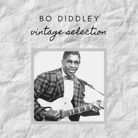 Bo Diddley - Bo Diddley - Vintage Selection