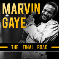 Marvin Gaye - The Final Road (live)