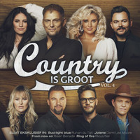 Various  Artists - Country Is Groot Vol. 4