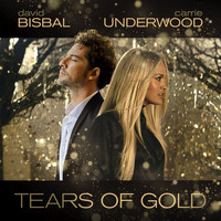 David Bisbal - Tears Of Gold
