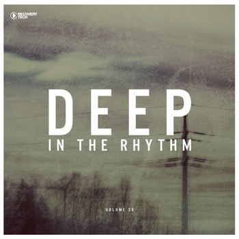 Various Artists - Deep in the Rhythm, Vol. 36