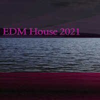 Various Artists - EDM House 2021