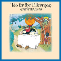 Cat Stevens - Tea For The Tillerman (Remastered 2020)