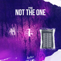 Pyro - Not the One